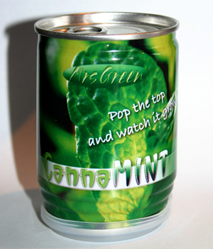 Canna Mint - Seeds in a Can.