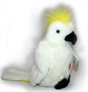 Australian Sulphur Crested Cockatoo with Song