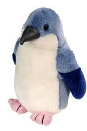 Australian Fairy Penguin with Song