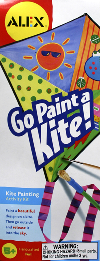 Go Paint a Kite