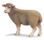 Schleich - Sheep Standing (Ewe) 13283