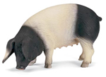 Schleich - Swabian Hall Pig - 13612