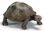 Schleich Giant Turtle - 14601