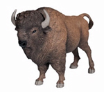 PAPO American Buffalo - P50119