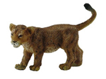 CollectA African Lion Cub Standing - 88417