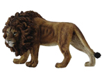 CollectA African Lion 88414