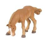 PAPO P51104 Bouronnais Foal