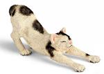 Schleich - Male Cat Stretching - 13677