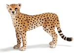 Schleich - Cheetah Female- 14614