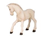 PAPO Cremello Foal - P51116