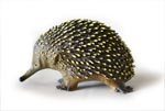 Echidna Replica Large 9cm, Small 4cm
