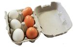 Wooden Eggs in Cardboard Egg Carton