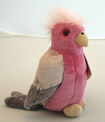 Australian Galah with Song