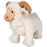 George the Marino Ram with Horns