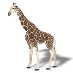 PAPO P50096 Giraffe (Adult)