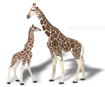 Papo - Giraffe and Baby