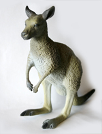 Kangaroo - Eastern Grey