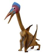 CollectA 88441 Hatzegopteryx Replica