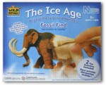The Ice Age Fossil Find