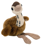 Ostrich Chick with Song