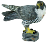 CollectA Peregrine Falcon - 88399