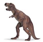 Schleich - Tyrannosaurus Rex 1:40 - 16454
