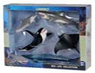 CollectA Sea Life 5 pcs Boxed set 88052