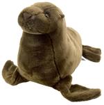Cuddlecove Sea Lion