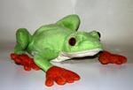 Red-Eyed Tree Frog 22cm