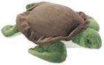 Australian Green Turtle 33cm