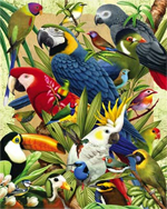 Visual Echo 3D Puzzle - Avian