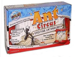 Ant Circus by Wild Science