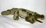 Saltwater Crocodile 42cm or 58cm