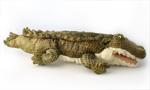Saltwater Crocodile Hand Puppet
