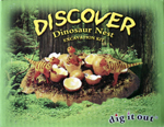Dig It Out Dinosaur Nest