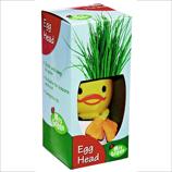 Science Kit Egg Head Magic Hair Plant (Rye Grass Planter) - Great Fun