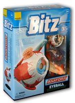 Bitz™ Anatomy Series - Eyeball Model 35 pieces