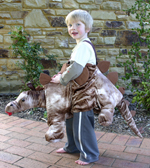 Kids Safari Wrap'n'Ride Stegosaurus