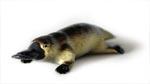 Platypus Replica Large 9cm, Small 6cm